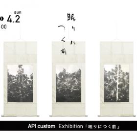 API custom 展示会